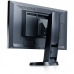 "Monitor LED IPS Eizo 24"" EV2436WFS-BK 1920x1200 VGA DisplayPort DVI-D USB Black"