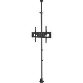 NewStar Flat Screen Ceiling to Floor Mount (Height: 210 - 380 cm)