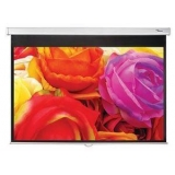 Optoma Screen DS-1123PMG+
