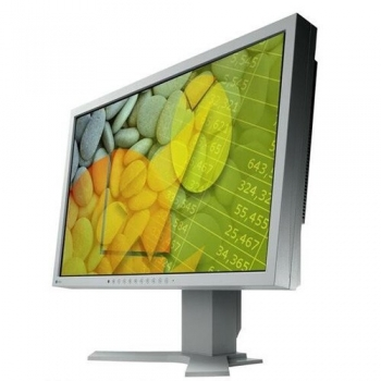 "Monitor LCD Eizo 22"" S2202WHA-GY 1680x1050 VGA DVI-D Grey"