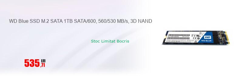 WD Blue SSD M.2 SATA 1TB SATA/600, 560/530 MB/s, 3D NAND