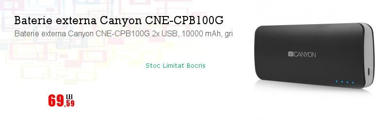Baterie externa Canyon CNE-CPB100G 2x USB, 10000 mAh, gri