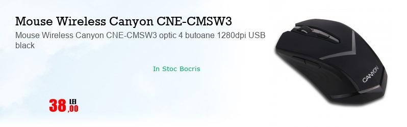 Mouse Wireless Canyon CNE-CMSW3 optic 4 butoane 1280dpi USB black