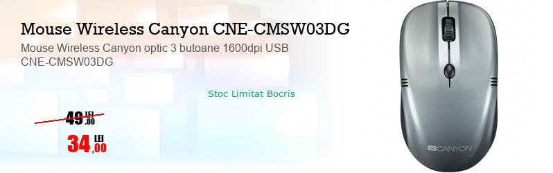 Mouse Wireless Canyon optic 3 butoane 1600dpi USB CNE-CMSW03DG