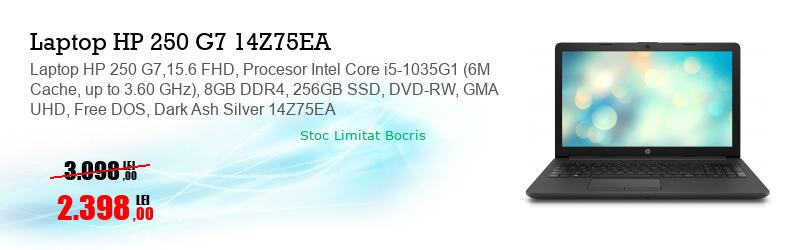 Laptop HP 250 G7,15.6 FHD, Procesor Intel Core i5-1035G1 (6M Cache, up to 3.60 GHz), 8GB DDR4, 256GB SSD, DVD-RW, GMA UHD, Free DOS, Dark Ash Silver 14Z75EA