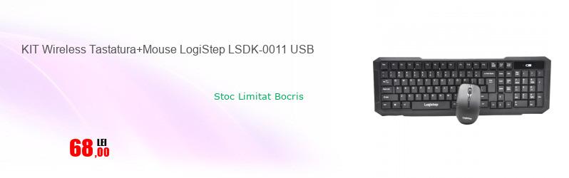 KIT Wireless Tastatura+Mouse LogiStep LSDK-0011 USB